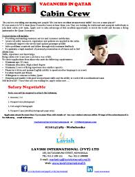 Flight Attendant Resume Example Resume Format For Cabin Crew Free Resume Example And Writing