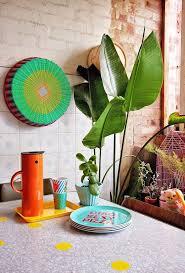 231 best indoor plants u0026 stuff i like images on pinterest indoor