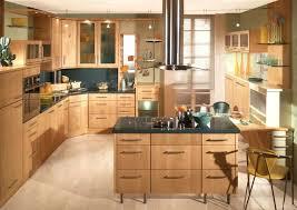 best kitchen design software 3d kitchen planner bloomingcactus me