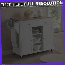 Stand Alone Kitchen Cabinet Kitchen Free Standing Kitchen Pantry Oak Kitchen Pantry Kitchen