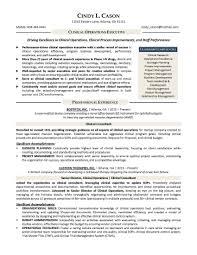 Atlanta Resume Writer Confortable Resume Companies In Houston Tx With Michigan Resume
