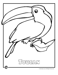 free coloring page of the rainforest endangered rainforest touca animal jr