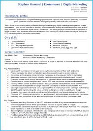 Proffesional Profile Seo Profile Resume Resume For Your Job Application