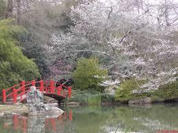 Botanical Gardens In Birmingham Al Al Birmingham Botanical Gardens Japanese Gardens Jpg