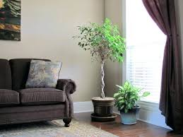 india home decor ideas decorations artificial plants for home decor online home