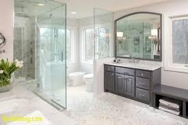 bathroom ideas houzz bathroom master bathrooms inspirational master bathroom ideas houzz