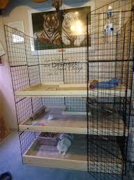 Make Rabbit Hutch Best 25 Bunny Home Ideas On Pinterest Bunny Hutch Home House