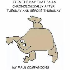 Meme Wednesday - my male companions it is wednesday my dudes know your meme