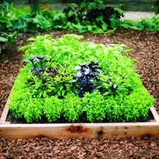 raised bed herb planter ideas garden herb planter ideas