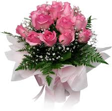 www flowers pretty pink roses flowers2thailand