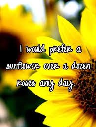 best 25 sunflower quotes ideas on pinterest be smile plum