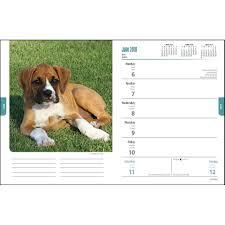 boxer dog t shirts uk boxers dogbreed gifts com boxer calendars