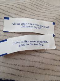 where can you buy fortune cookies 71 best fortune cookies quotes images on fortune