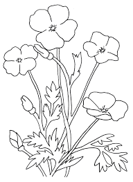 coloring pages lotus flower kids coloring lotus flower coloring