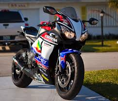 honda cbr 1000 honda cbr 1000 rabbit damn pinterest honda and cbr