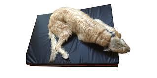 extra large dog beds by big dog company bad company