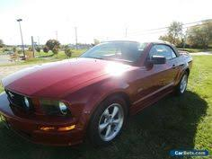 2008 Black Mustang Gt Ebay 2008 Ford Mustang Red Paint Black Interior 2008 Ford