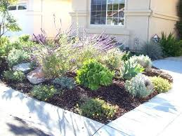 San Diego Landscape by Landscaping Companies San Diego Ca Landscape Supply San Diego Ca