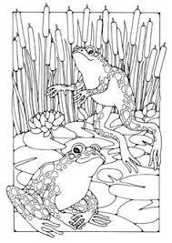 kleurplaat kikker kleuteridee frog preschool coloring free