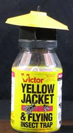 victor poison free m362 victor yellow jacket trap pest supplies