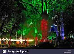 city park tree downtown lights christmas decorations bogota