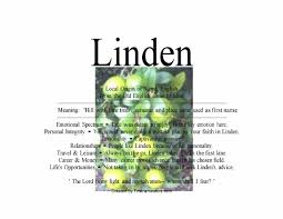 meaning of the english name linden u2013 namemeans net