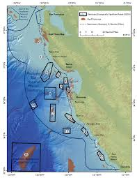 Point Lobos State Reserve Map by Facilitating Science At Monterey Bay National Marine Sanctuary