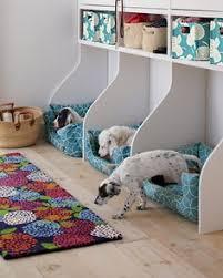 pet room ideas pet friendly dog rooms future house and future