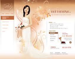 wedding web wedding web site design wedding web design company india