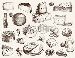 cheesemaking various types of cheese set of vector sketches on