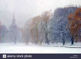 boston public garden in a snow storm looking toward back bay with