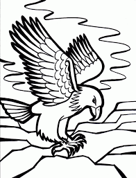 popular coloring page birds 58 7224