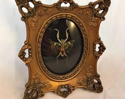 Occult Home Decor Exquisite Occult Home Decor At Style Apartment Design Ideas