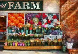 flowers store near me store westfield nj the flower stand photograph by mike savad