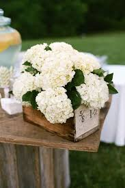 hydrangea wedding bouquet wedding flowers hydrangeas woman getting married