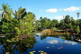Naples Botanical Garden Price Why You Must Visit The Naples Botanical Garden In Naples Fl