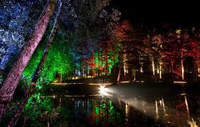 enchanted forest of light tickets light festival forest google zoeken concept pinterest