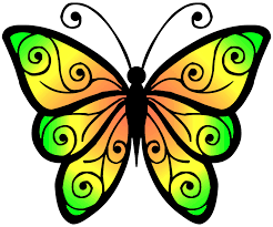 butterfly clipart high resolution pencil and in color butterfly