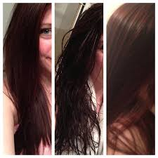 coconut oil hair before and after http www coconutoil best