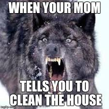 Wolf Memes - angry wolf memes imgflip