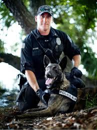 belgian malinois vest especially for pets partners in crime meet k 9 cesh u0026 handler