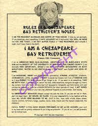 amazon com rules in a chesapeake bay retriever u0027s house prints