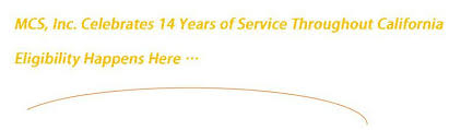 medi cal consulting services