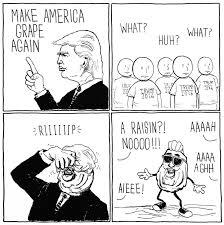 Raisins Meme - make america grape again donald trump know your meme