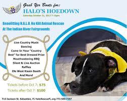 boxer dog rescue florida adoptable dogs