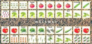 how to grow a vegetable garden how to plant a vegetable garden the