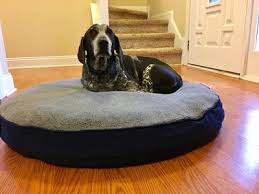 Ll Bean Dog Bed Premium Dog Bed Replacement Mattress Insert Round Free Shipping
