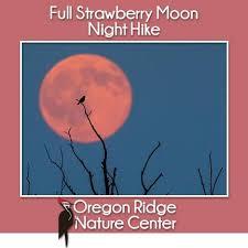 full strawberry moon strawberry moon night hike oregon ridge nature center