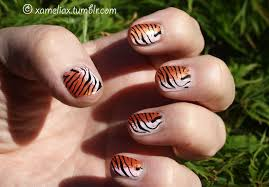 tiger striped nails design images nail art designs