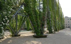 Stainless Steel Cable Trellis The History Of Living Walls Living Walls And Vertical Gardens